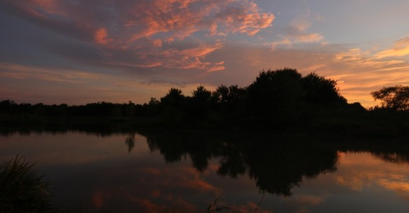 Wetlands Sunset-2016-resized SCNP John Chitty