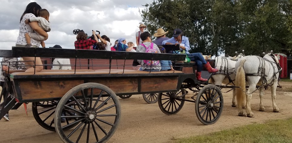 SNF: Rebecca Waldo wagonmaster