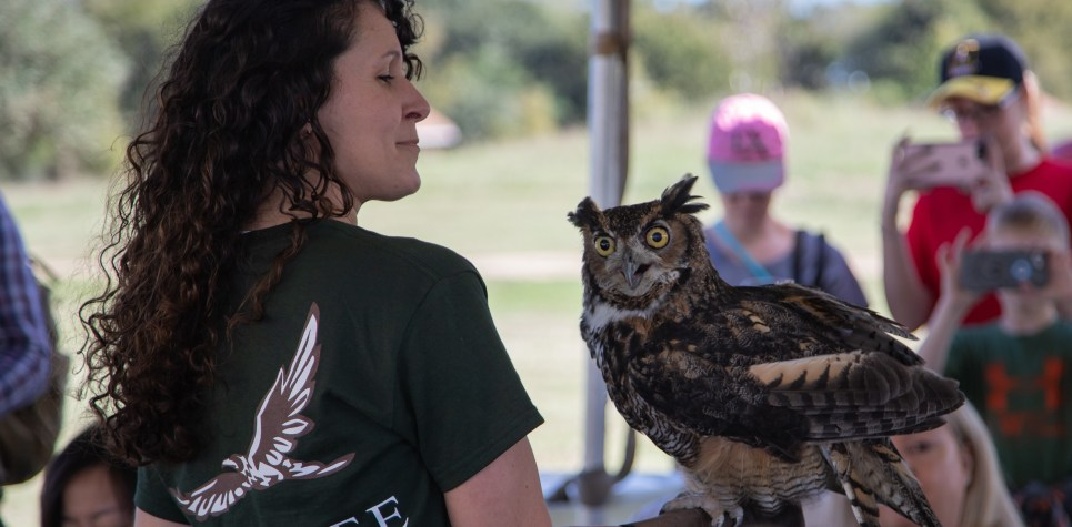 SNF 2018: Wildlife Center of Texas and Great Horned Owl