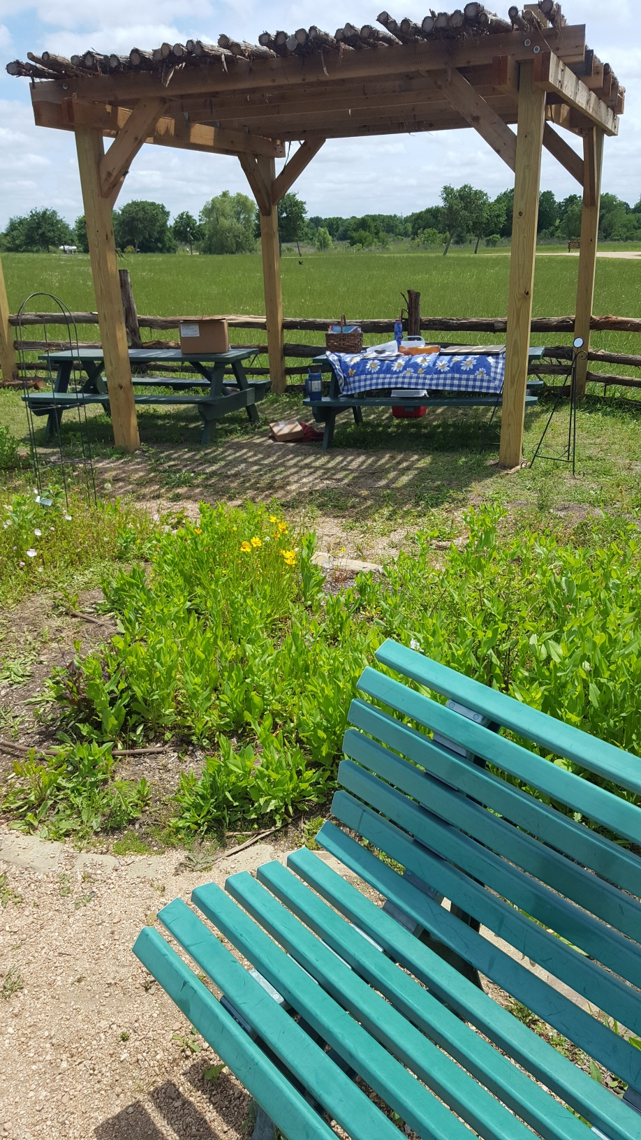 Seabourne Nature Park Butterfly Garden on Earth Day 2019 by TMN Kimberly Farou (10)
