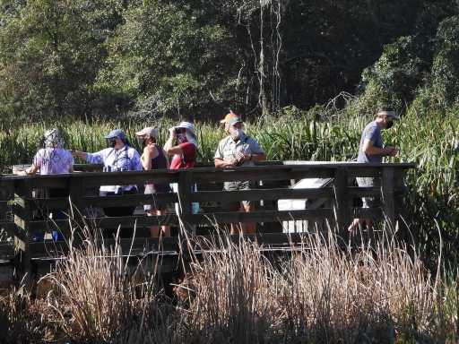 2020 field trip at Brazos Bend State Park