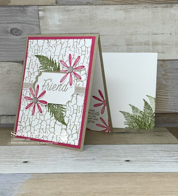 Friendship-Day-Card-with-Daisy-and-Crackle-Paint-Background-Stamp