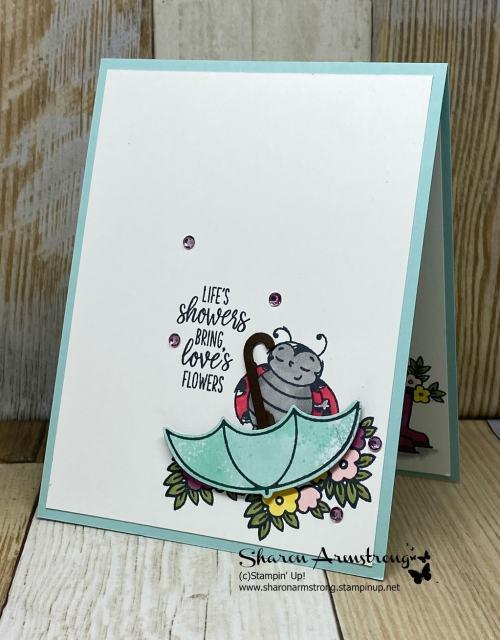 Charming-Greeting-Cards-Handmade-with-Ladybug-and-Umbrella