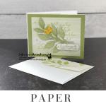 make-diy-gift-card-holder-paper-pumpkin-alternative