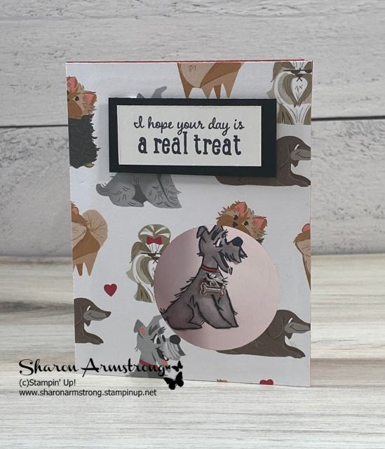 Dog lovers Birthday cards are such a treat and so easy to make