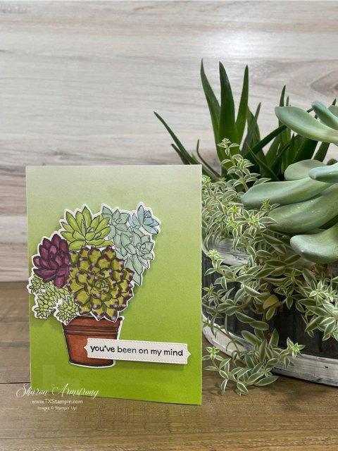 I love this watercolor pencil technique on these die cut succulents.