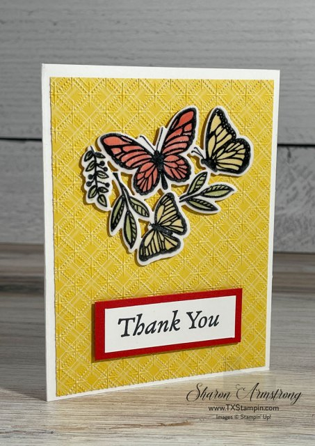 Embossing on vellum paper with Stampin' Blends gives a pretty look.