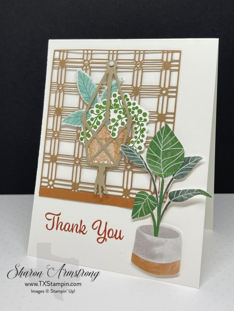 Need an idea for a friendship card? This greeting card has cut lattice, die cuts, stamping and more!