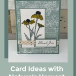 stampin-up-natures-harvest-card-ideas