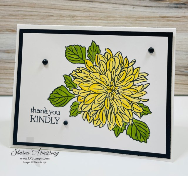 this-card-making-masking-technique-make-leaves-appear-stamped-behind-the-flower