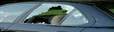 McKinney windshield replacement