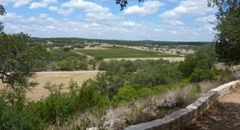 Driftwood visit - Best View