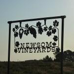 2014 Newsom Grape Day Preview