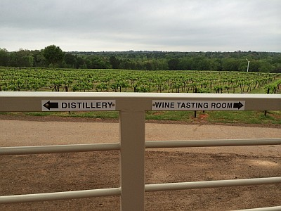 Dividing line between tasting rooms