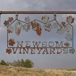 2014 Newsom Grape Day