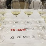 Highlights of the 2014 TEXSOM Conference