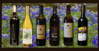 Rebecca's Best of 2014 Texas wines
