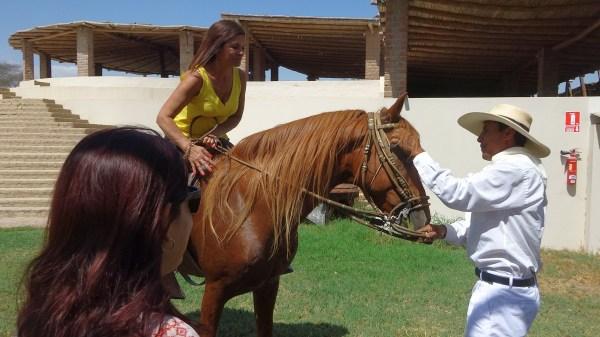Gloria on a Peruvian horse
