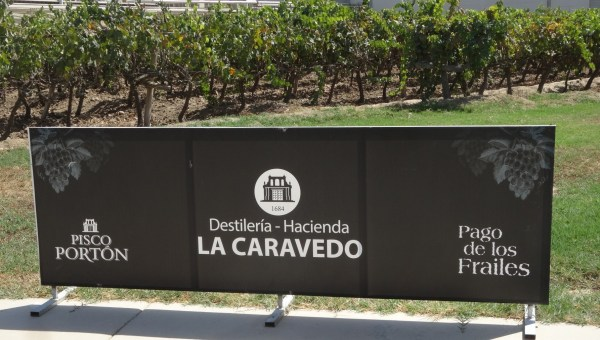 Pisco Portón sign