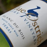 Review of Blue Ostrich Winery Blanc du Bois