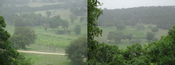 Scimitar Hill Vineyards two vineyards