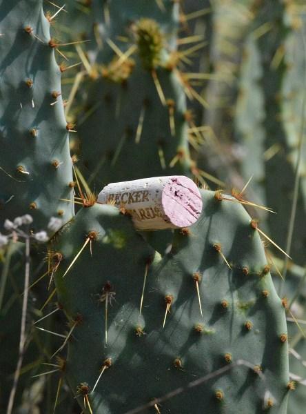 Becker Vineyards Jolie cork