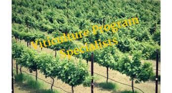 Viticulture Program Specialists