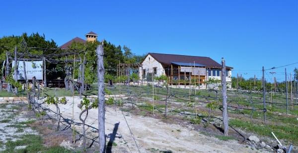 Lara Vineyard building