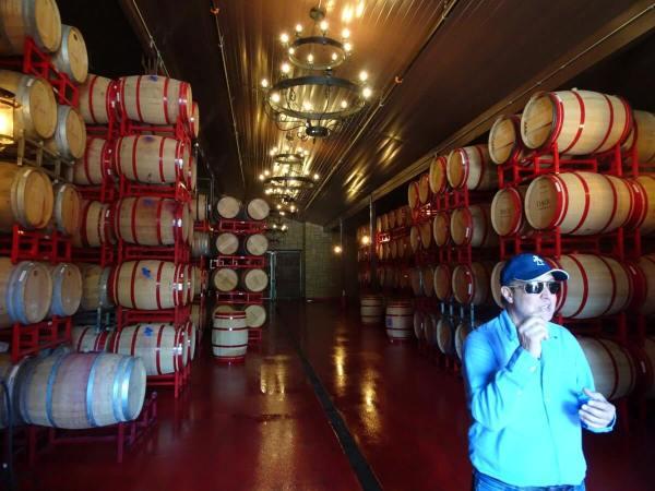 DAOU barrels with Daniel Daou