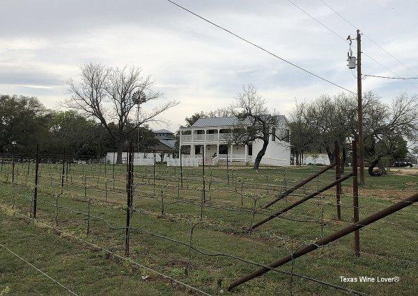 Signor Vineyards vineyard and house