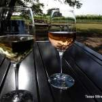 Lewis Wines Fish Fry and Swim Spot Release