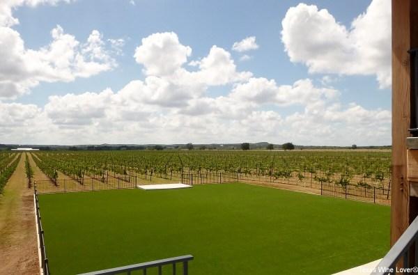 Augusta Vin vineyard