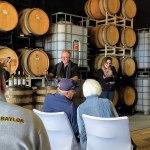 Blue Ostrich Winery Sneak Peek