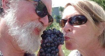 John and Wendy Rohan
