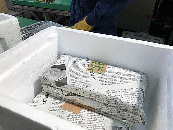 新聞紙で梱包されたドライアイス。新聞紙でくるむのが一番保存に良いとのことでした。