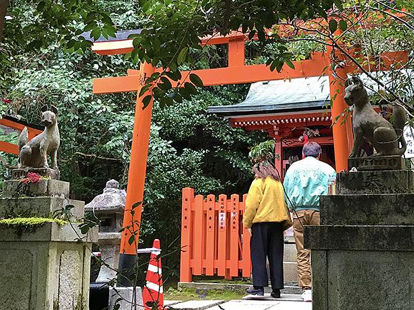 本来はこの神社は稲荷大社なのです。だから社殿前に鎮座するのは「おキツネさん」です。