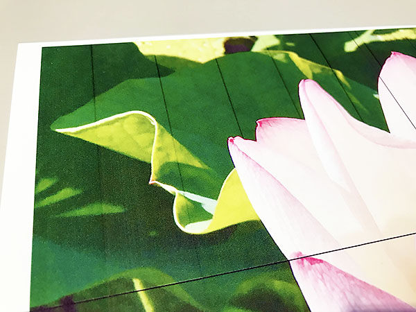 印刷していて、おかしな線が入っているのを発見。約2.5cm幅で均等に入っています。