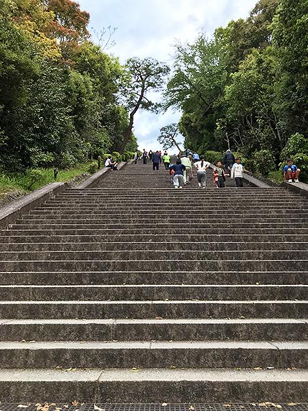 見上げるほど急な階段。若い人はトレーニングで一気に駆け上がる。