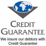 Bản chất của bảo lãnh tín dụng là gì?