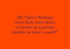 tygrysy_brykajace