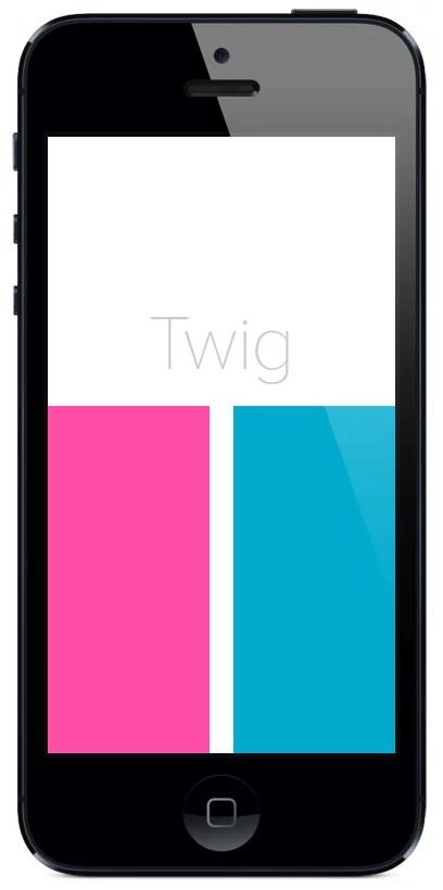 Meet Twig