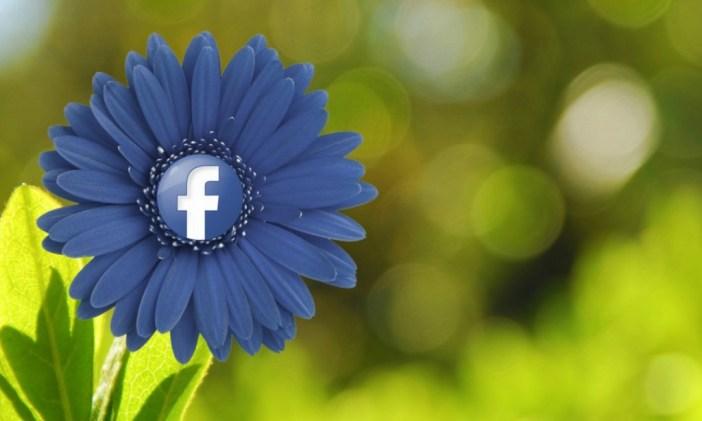 Facebook kwiatek