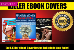 Ebook Cover Designs from Fiverr.com