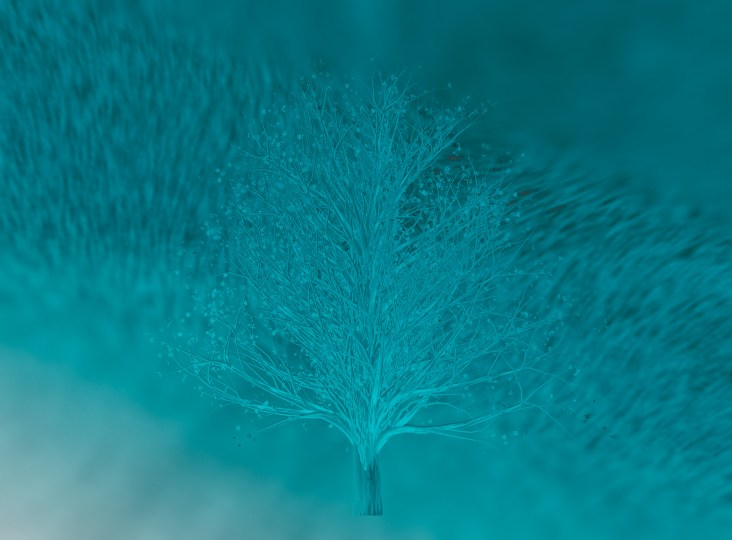 Snow-Tree-(Optimized)