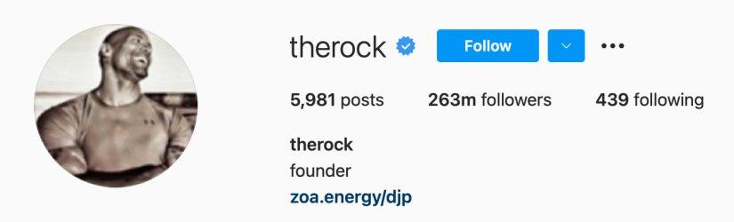 the rock on instagram