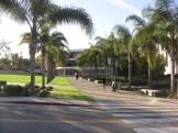 Hannon Library