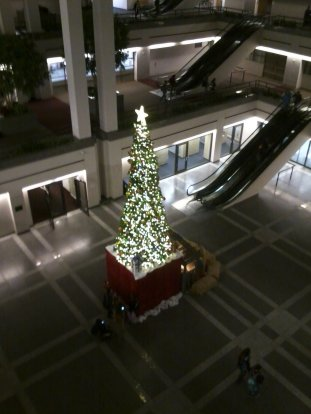 05 Christmas Tree in UHall at LMU