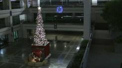 06 Uhall Tree and Nativity