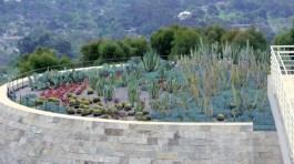 34 Cactus Garden