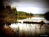 Tahkenitch Lake, Oregon Coast